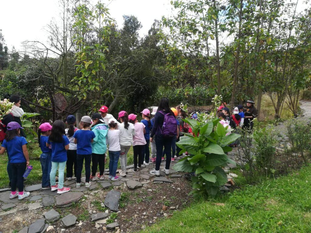 Salidas pedagógicas ambientales