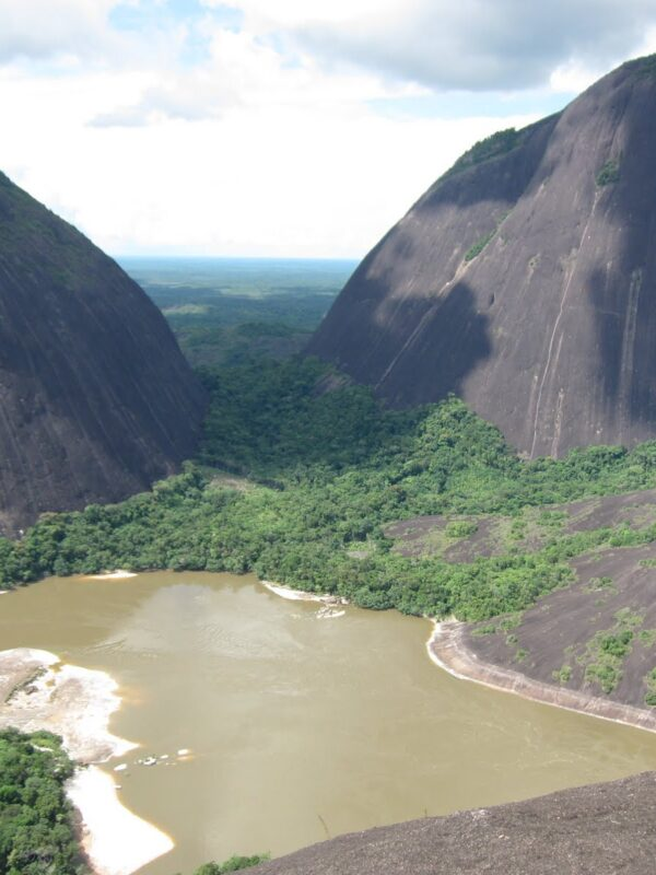 Guainia Cerro de Mavecuré