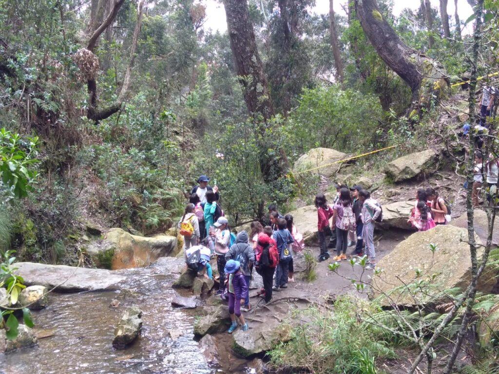 Caminatas ecologicas con colegios Quebrada las delicias