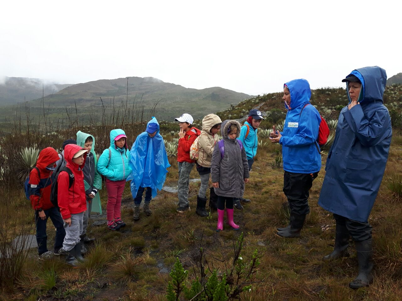 Taller pedagógico ambiental