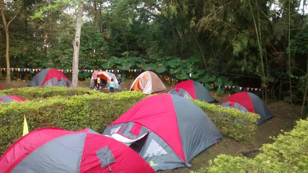Camping Tobia