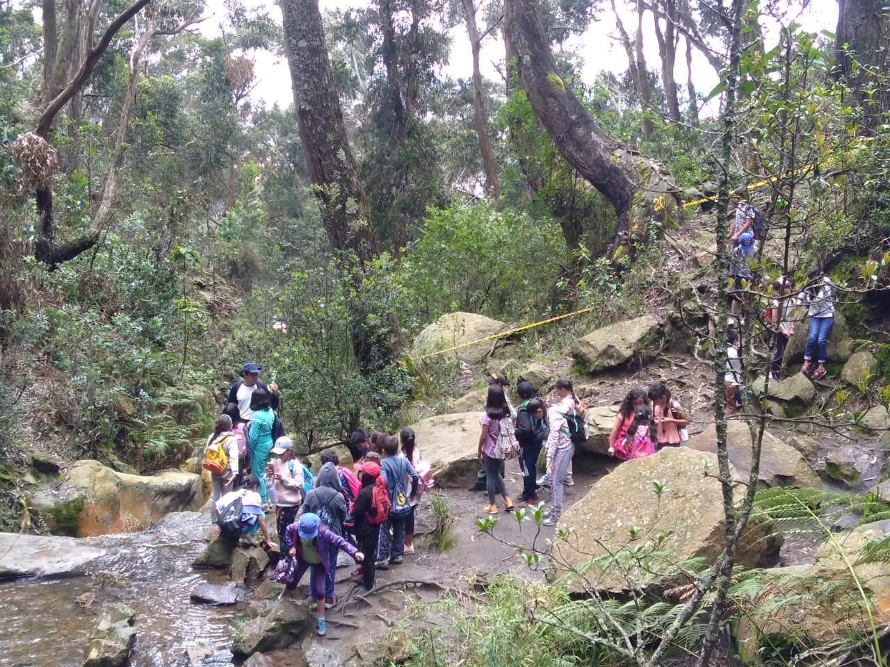 Quebrada las delicias Bogotá