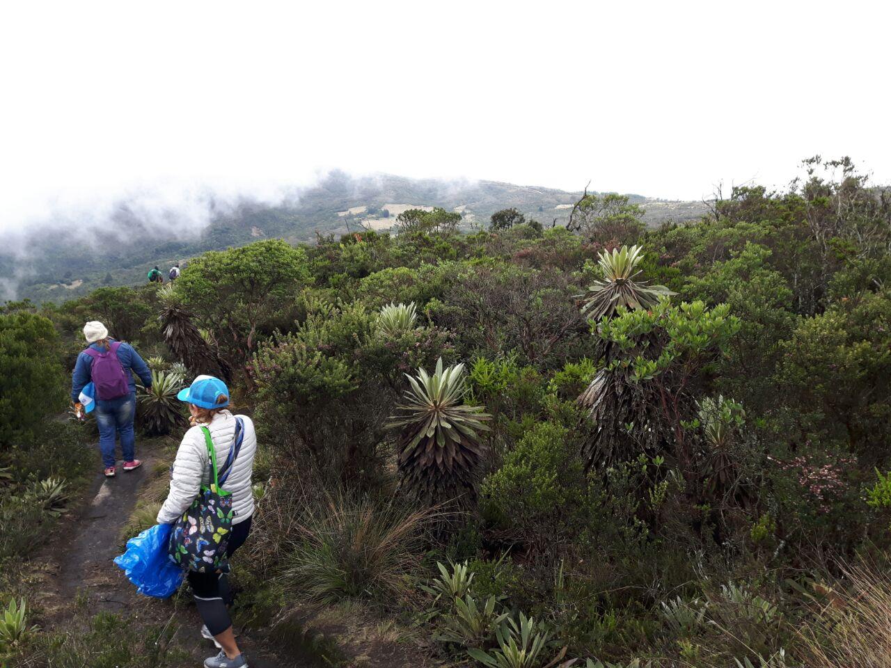 Recorrido matarredonda - Caminatas ecológicas