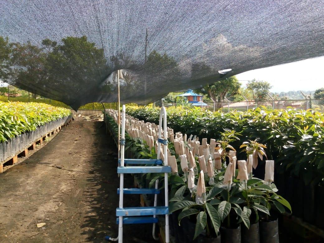Salida pedagógica agroecología